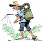 Pesticidas letales