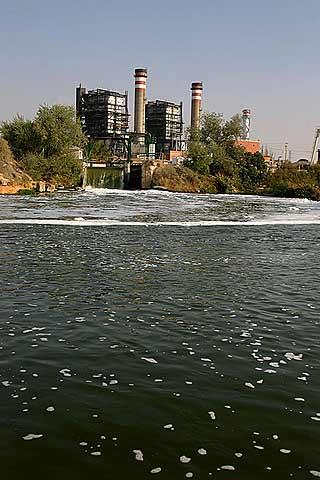 INSECTICIDAS suponen un peligro para los ríos europeos