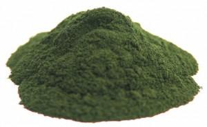 MICROALGAS como ingredientes para ALIMENTOS estimulantes del SISTEMA INMUNOLóGICO