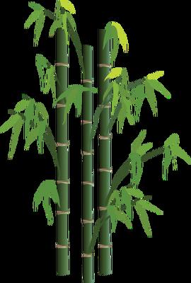 Aguas residuales basado en el bambú