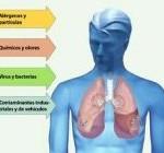 Los expertos advierten de los efectos nocivos de la contaminación en la salud