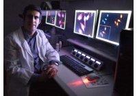 Una Investigacion explica como algunos virus provocan CANCER