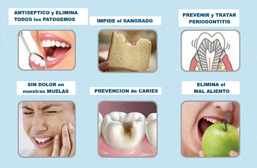 dental jet21